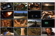Polowanie na kota enigmê / Hunt For The Shadow Cat (2011) PL.TVRip.XviD / Lektor PL