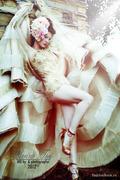 http://thumbnails107.imagebam.com/24192/ee8c38241914377.jpg