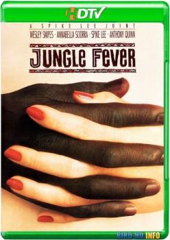 Jungle Fever 1991 m720p HDTV x264-BiRD