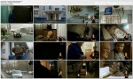 Hydraulik do zada? specjalnych / The Plumber For Every Need (2011) PL.DVBRip.XviD / Lektor PL