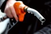 Harga BBM naik 2013 - Ist.