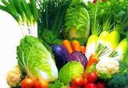 Makanan untuk mencegah kanker - Ist