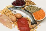 Nutrisi protein - Ist