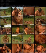 Gay Hot Video Collection