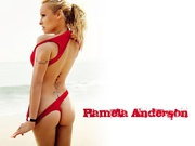 Pamela Anderson : Very Hot Wallpapers x 3