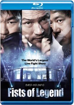 Fists of Legend 2013 m720p BluRay x264-BiRD