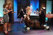 SNL skits 10/12; Vanessa Bayer, Nasim Pedrad, Cecily Strong, Kate McKinnon, Noel Wells