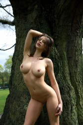 http://thumbnails107.imagebam.com/28403/caef70284025568.jpg