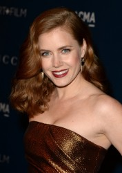 Amy Adams - 2013 LACMA Art + Film Gala in LA 11/2/13