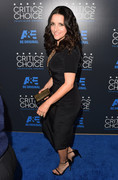 Julia Louis-Dreyfus - 5th Annual Critics' Choice Television Awards in Beverly Hills 5/31/15